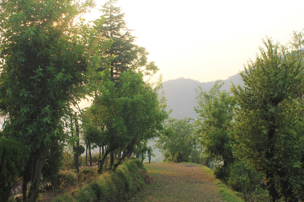 Garhwal In Pictures: Memories From A Week In Uttarakhand